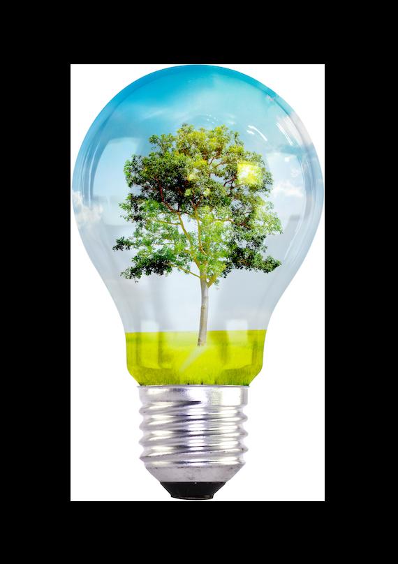 Lampadina ambiente idee green PH studio